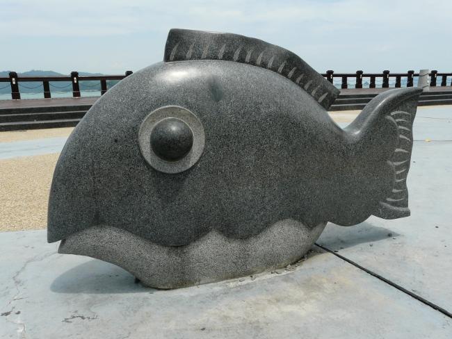 6kotasteinfisch