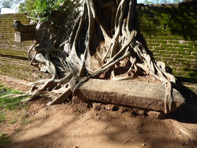 3nPolonnaruwa