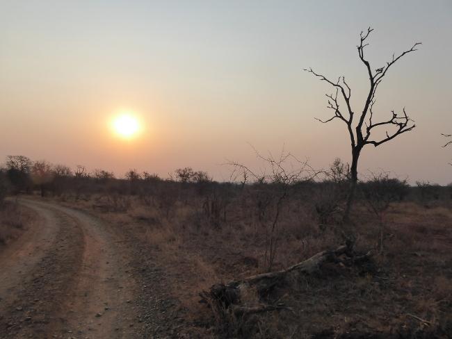 SWASILAND 🇸🇿